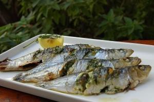 Portuguese_Food_Sardines