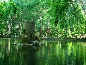 Pena_Palace_Park_Lake