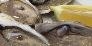 Ramiro_Seafood_Best_Restaurant_Lisbon