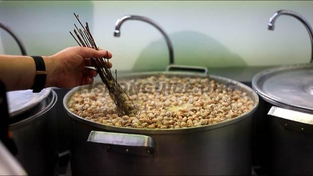snails-caracois-lisbon-portugal