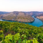 Car Transfer From Lisbon to Douro Valley