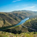 5 Ways to Reach Douro Valley from Lisbon
