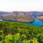 Travel From Lisbon to Douro Royal Valley Hotel & Spa
